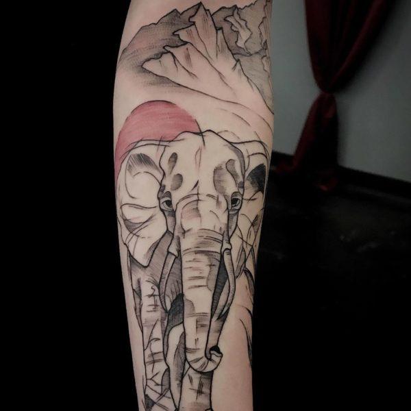 Zakk: Sketchy Elephant