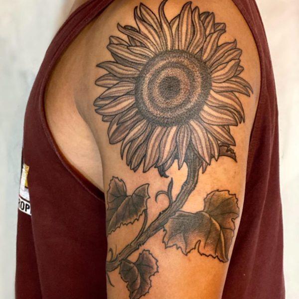 Dock: Sunflower