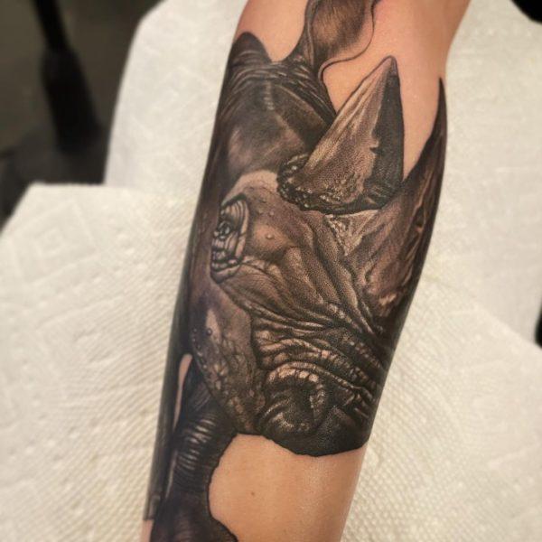Leif: Rhino